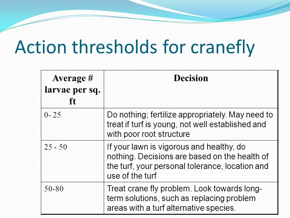 Action thresholds for cranefly