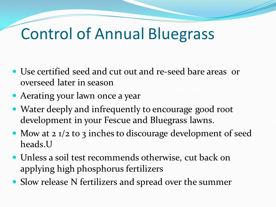 Control of Annual Bluegrass
