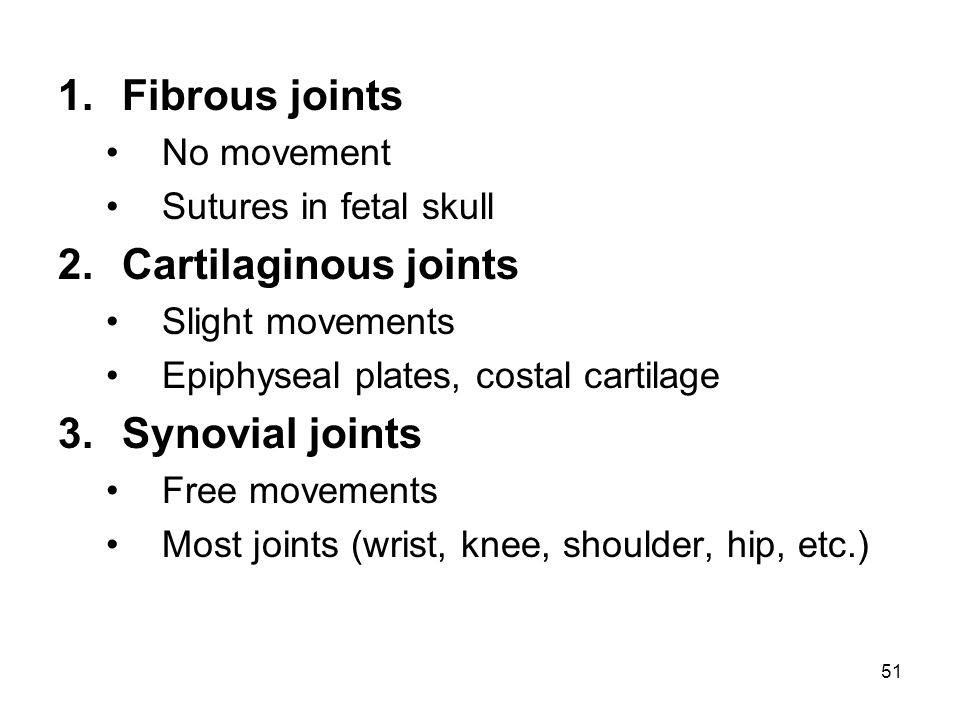 Fibrous joints Cartilaginous joints Synovial joints No movement