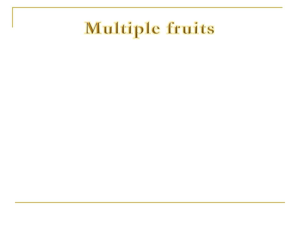 Multiple fruits
