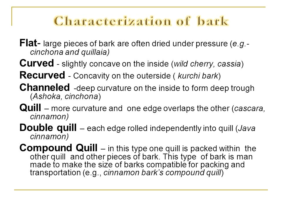 Characterization of bark
