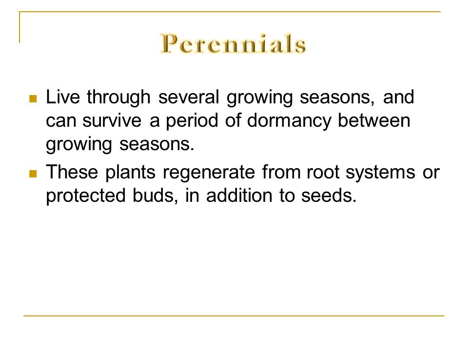 Perennials Live through several growing seasons, and can survive a period of dormancy between growing seasons.