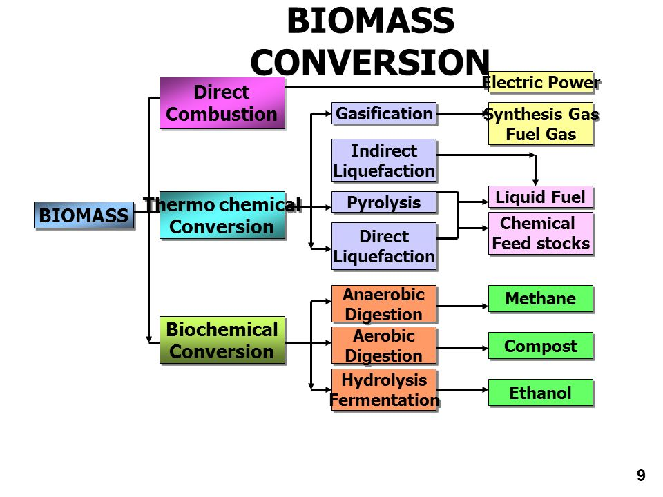 BIOMASS CONVERSION Direct Combustion Thermo chemical BIOMASS