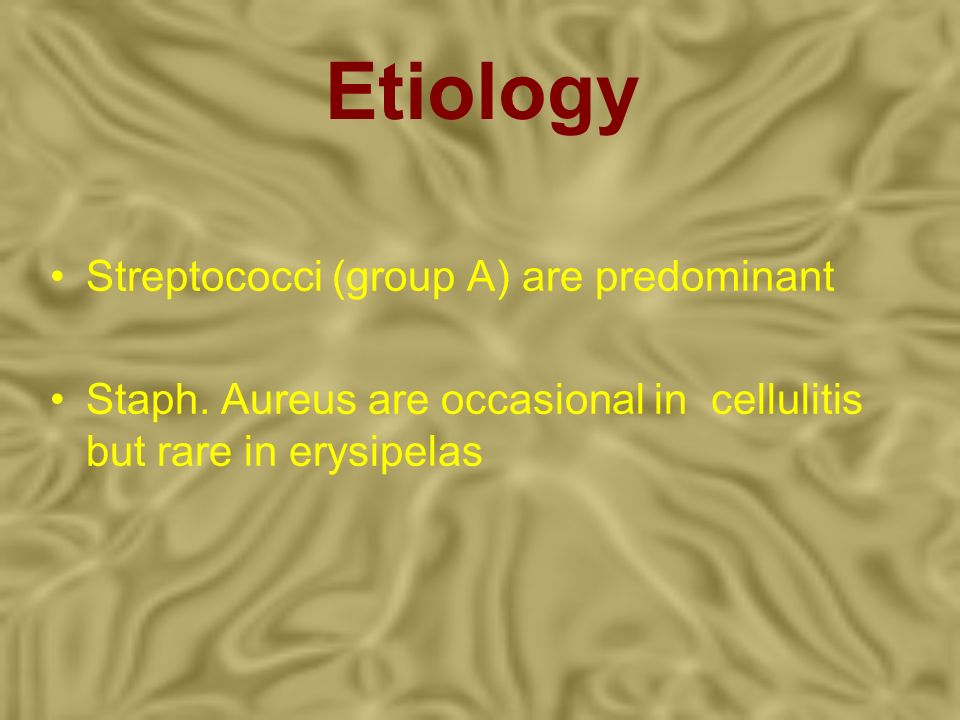 Etiology Streptococci (group A) are predominant