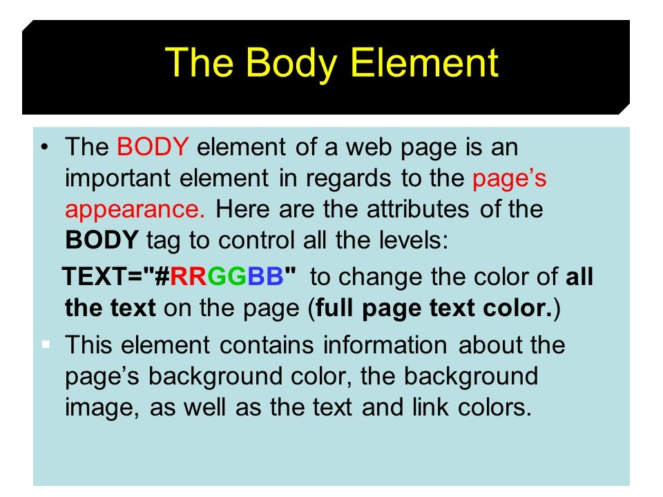 The Body Element
