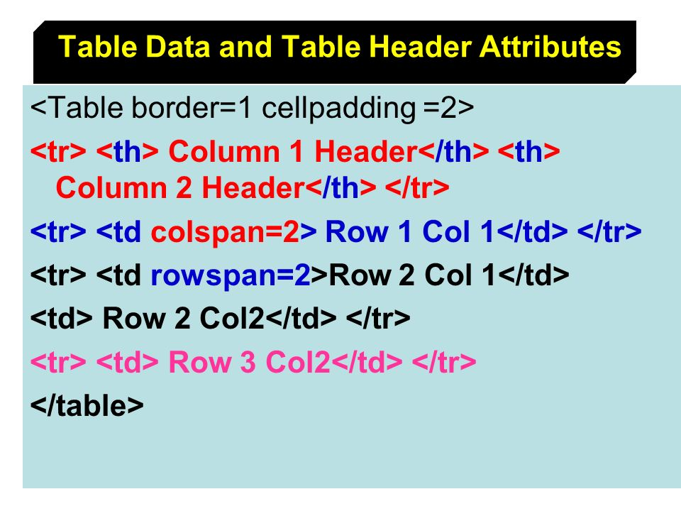 Table Data and Table Header Attributes