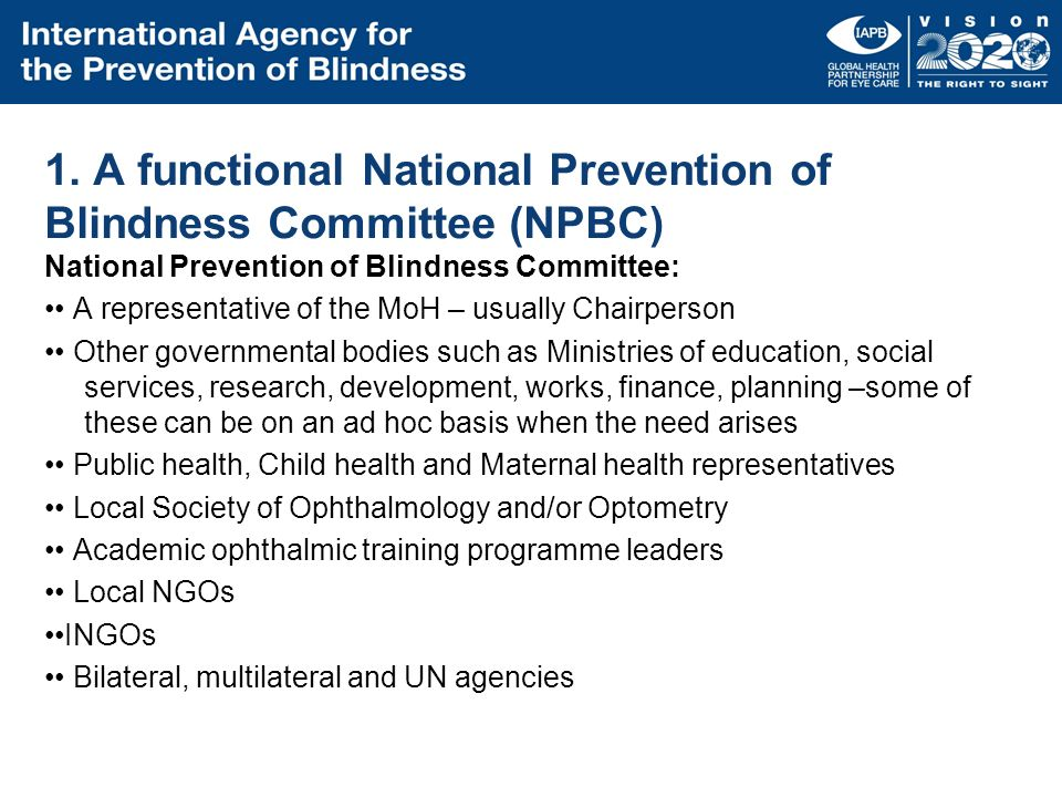 1. A functional National Prevention of Blindness Committee (NPBC)