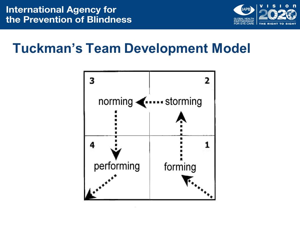Tuckman's Team Development Model