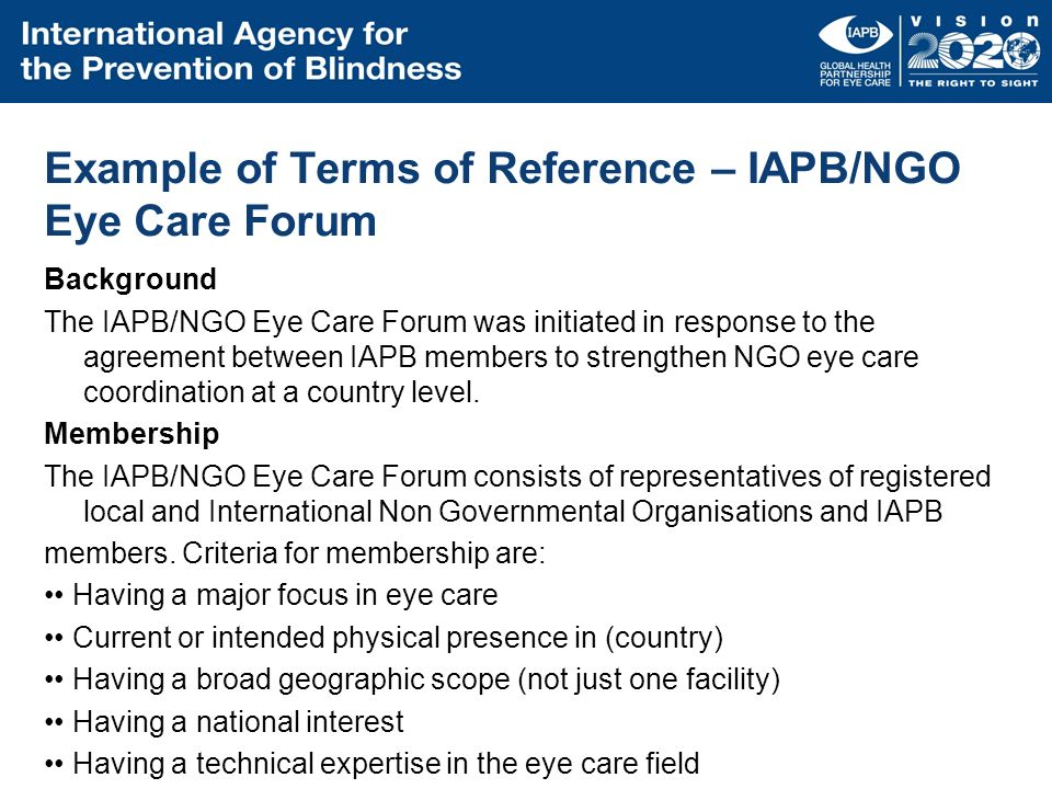 Example of Terms of Reference – IAPB/NGO Eye Care Forum