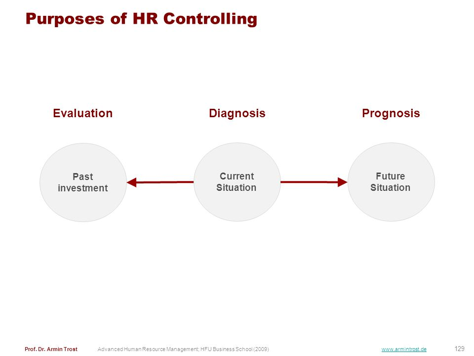 Purposes of HR Controlling
