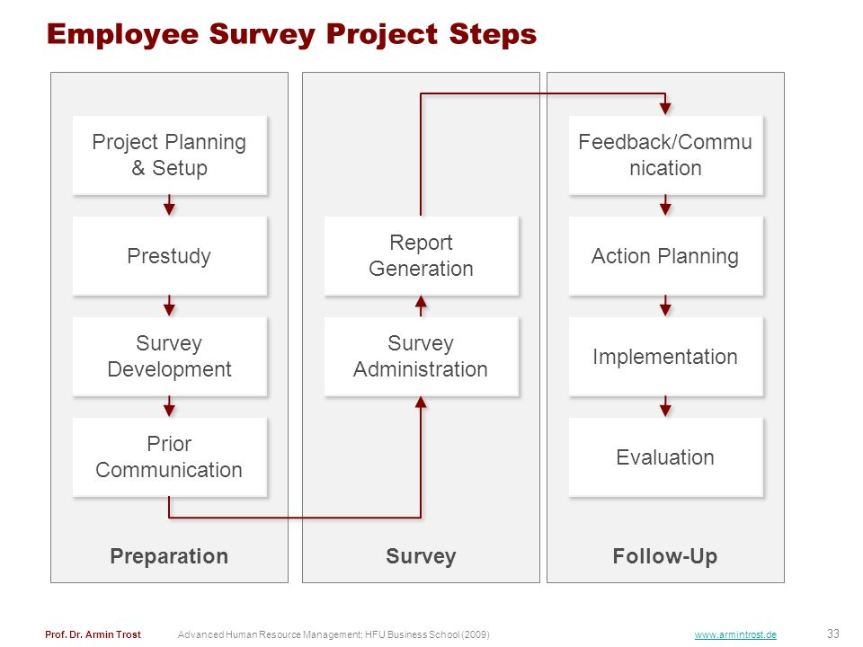 Employee Survey Project Steps