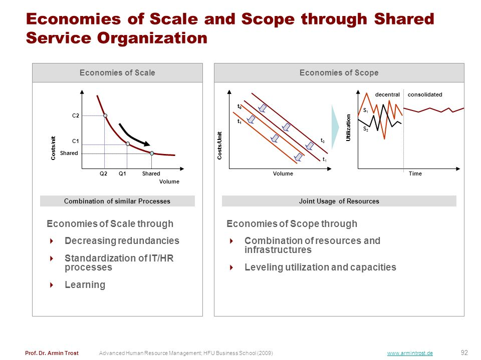 Economies of Scale and Scope through Shared Service Organization