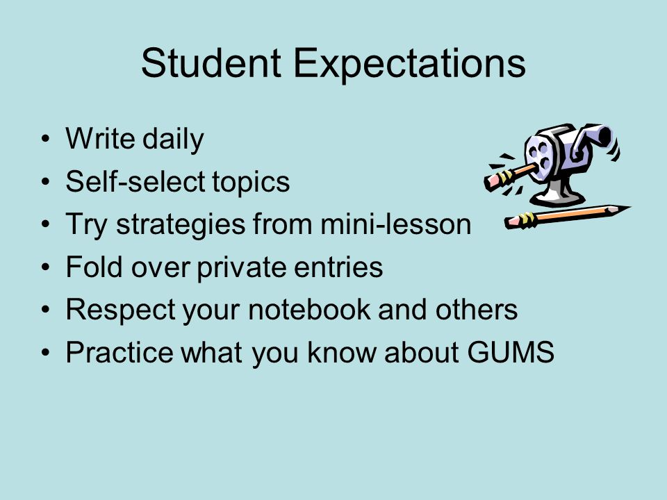 Student Expectations Write daily Self-select topics