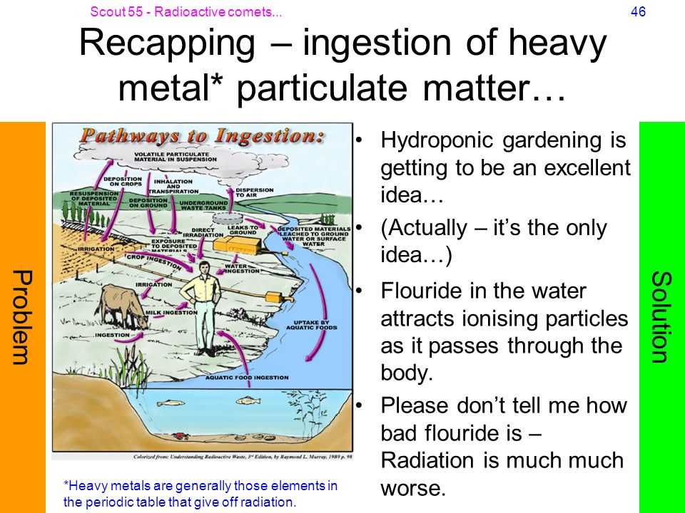 Recapping – ingestion of heavy metal* particulate matter…