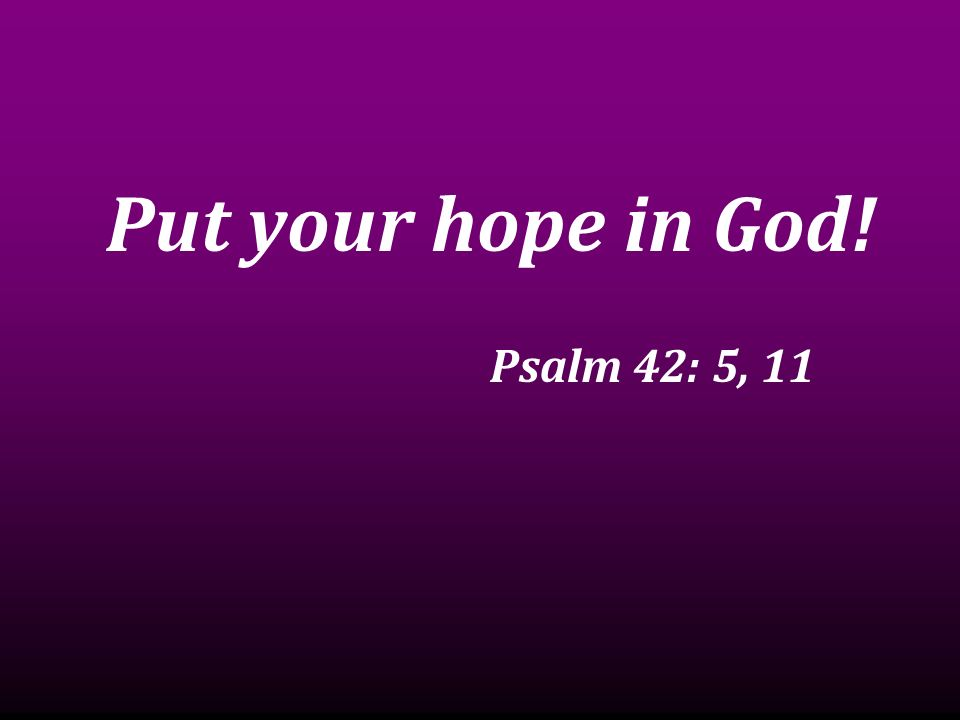 Put your hope in God! Psalm 42: 5, 11