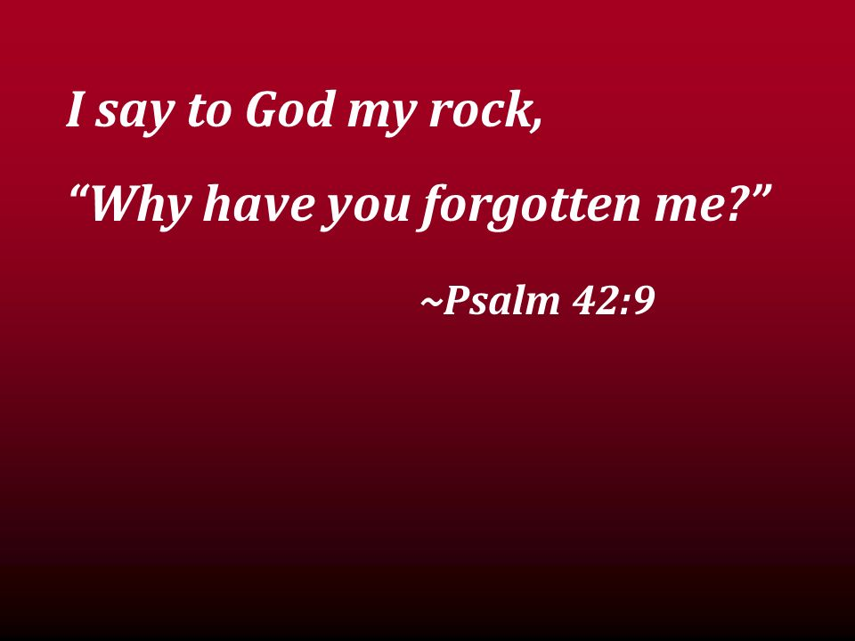 I say to God my rock, Why have you forgotten me ~Psalm 42:9