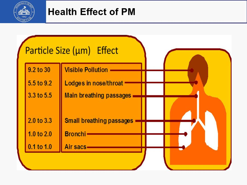Health Effect of PM 5