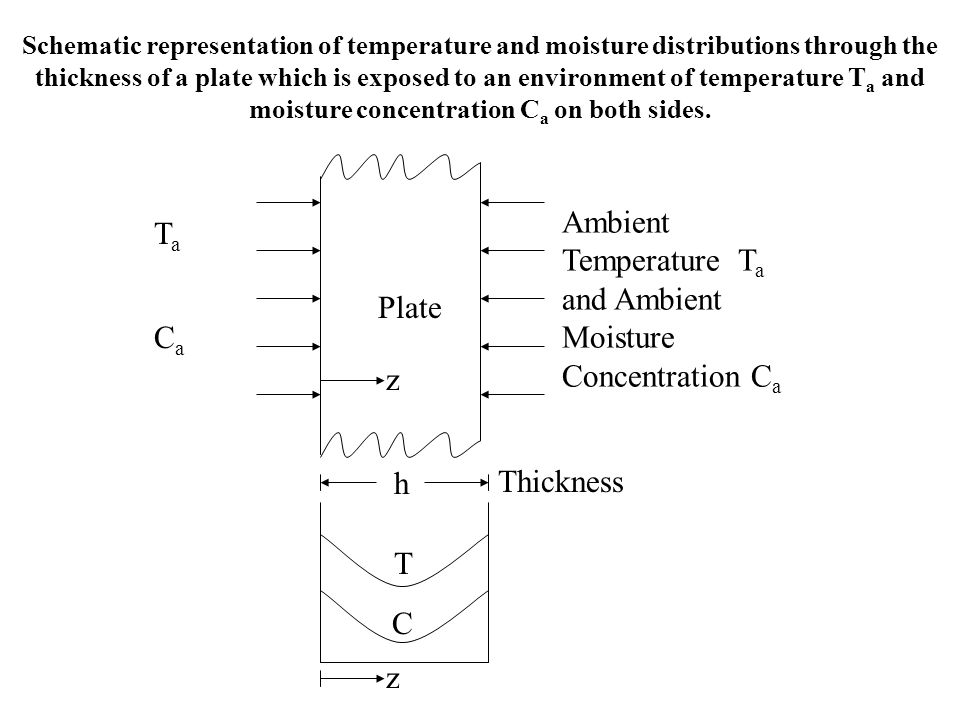 Ambient Temperature Ta and Ambient Moisture Concentration Ca Ta