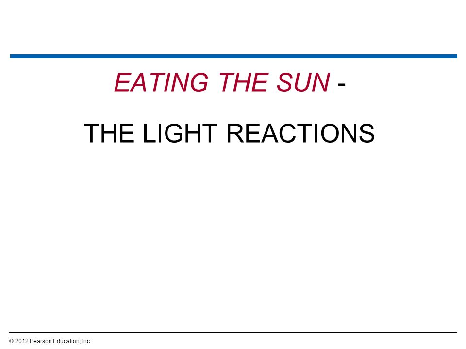 EATING THE SUN - THE LIGHT REACTIONS © 2012 Pearson Education, Inc. 15
