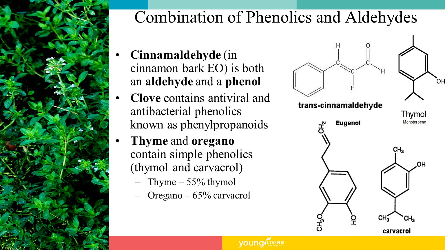 Combination of Phenolics and Aldehydes