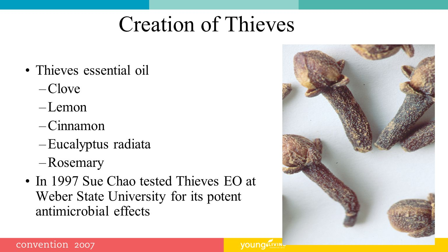 Creation of Thieves Thieves essential oil Clove Lemon Cinnamon