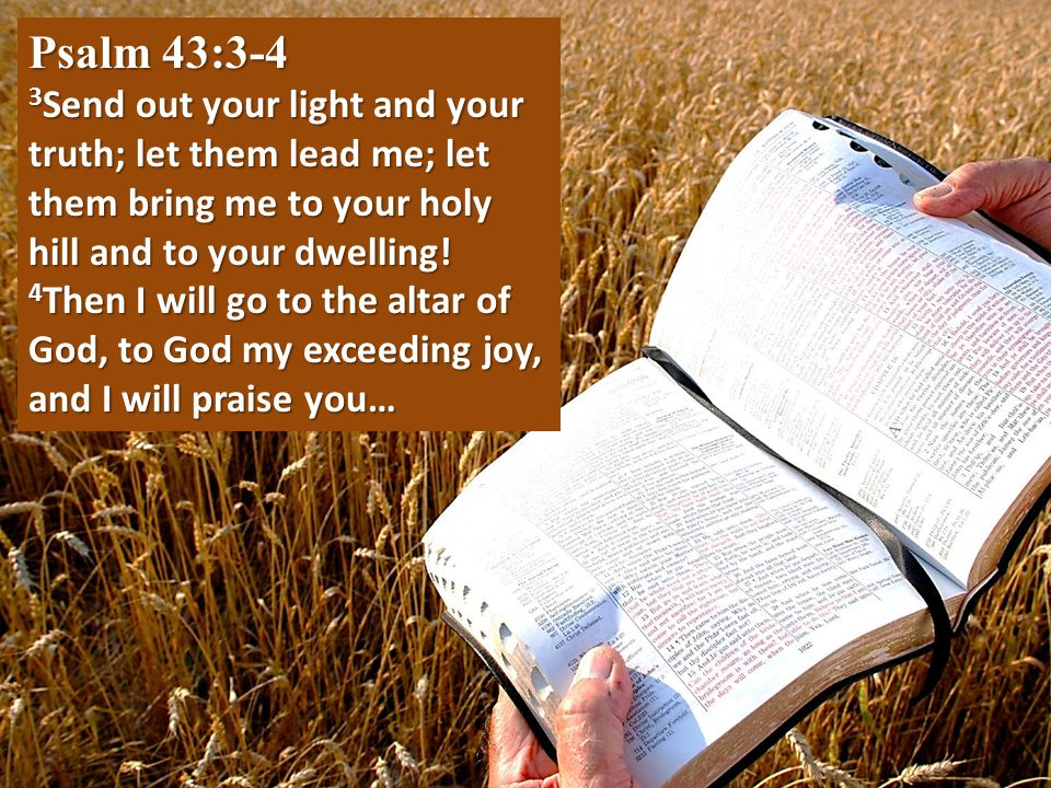 Psalm 43:3-4 3Send out your light and your truth; let them lead me; let them bring me to your holy hill and to your dwelling!