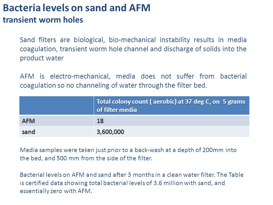 Bacteria levels on sand and AFM transient worm holes