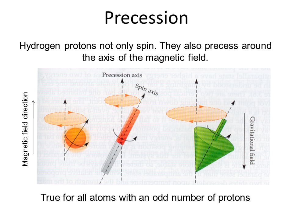 Precession Hydrogen protons not only spin. They also precess around the axis of the magnetic field.