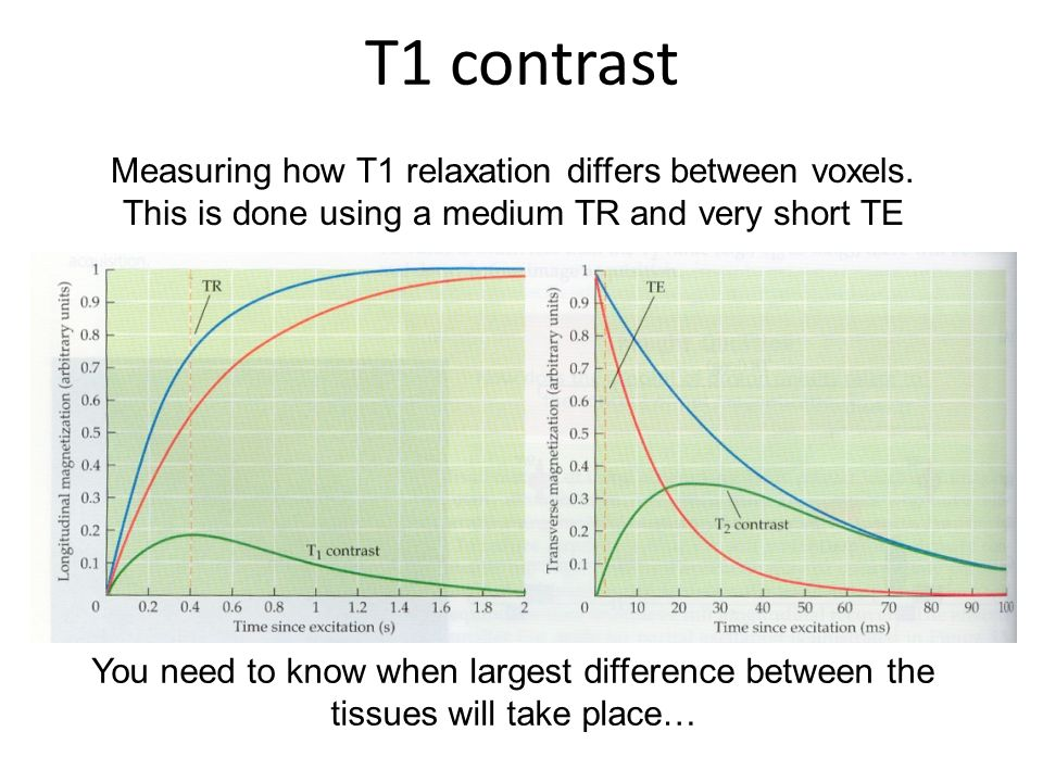 T1 contrast Measuring how T1 relaxation differs between voxels. This is done using a medium TR and very short TE.