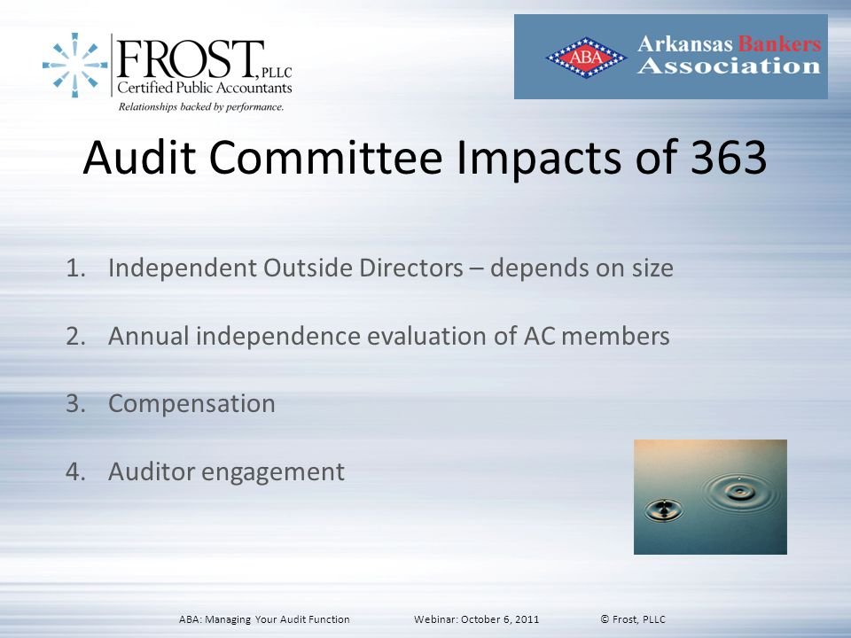 Audit Committee Impacts of 363