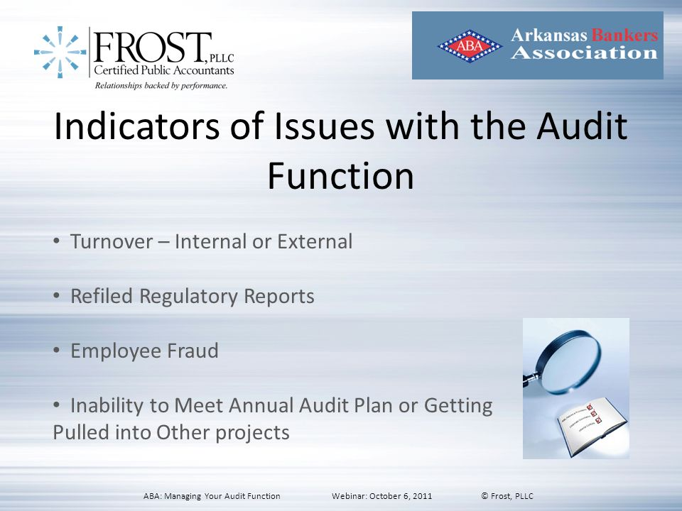Indicators of Issues with the Audit Function