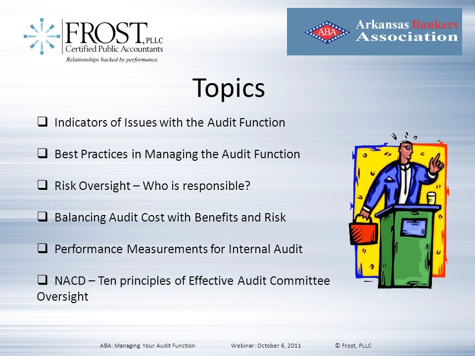 Topics Indicators of Issues with the Audit Function