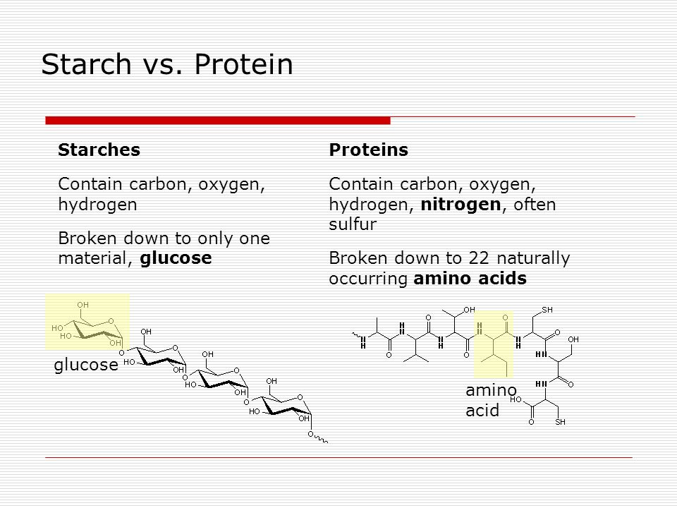Starch vs. Protein Starches Contain carbon, oxygen, hydrogen