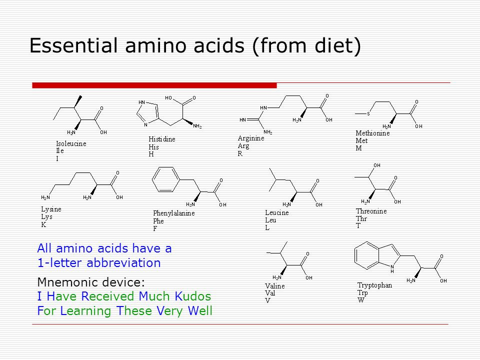 Essential amino acids (from diet)