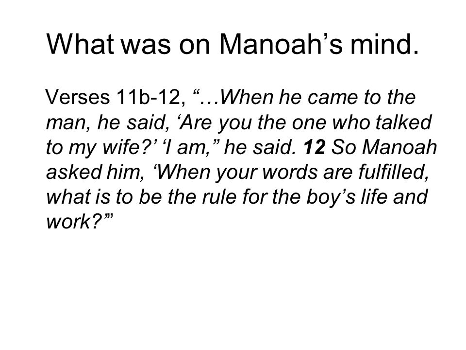 What was on Manoah's mind.