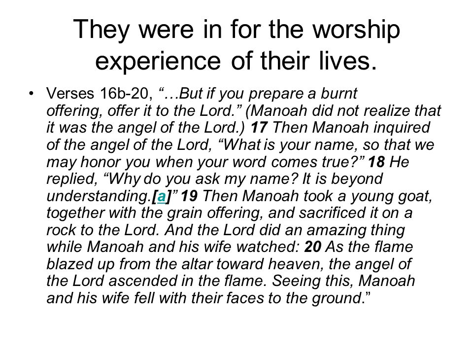 They were in for the worship experience of their lives.