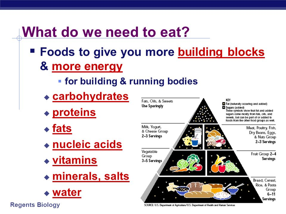 What do we need to eat Foods to give you more building blocks & more energy. for building & running bodies.