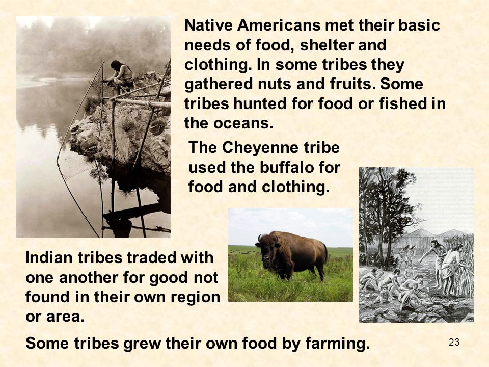Native Americans met their basic needs of food, shelter and clothing