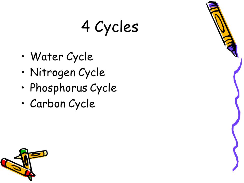 4 Cycles Water Cycle Nitrogen Cycle Phosphorus Cycle Carbon Cycle