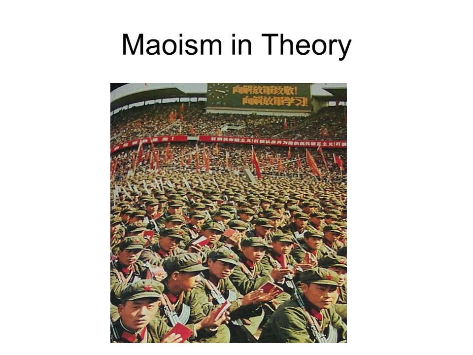 Maoism in Theory