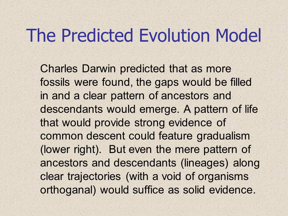 The Predicted Evolution Model