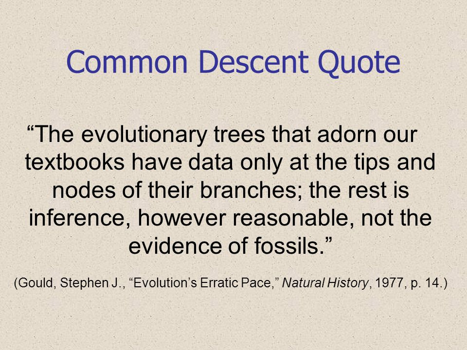 Common Descent Quote