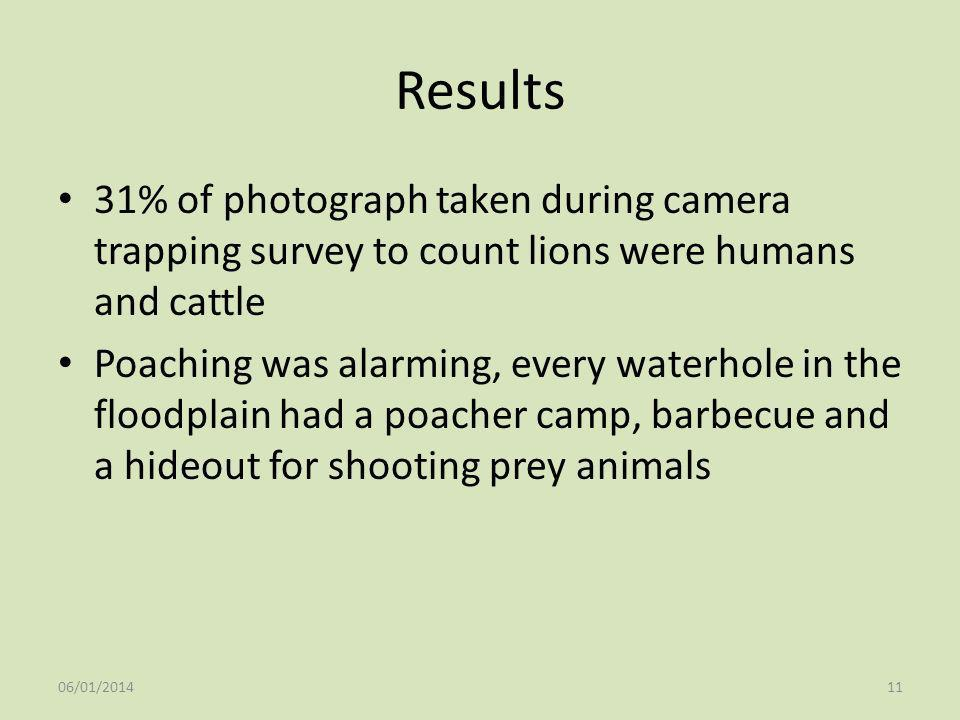 Results 31% of photograph taken during camera trapping survey to count lions were humans and cattle.