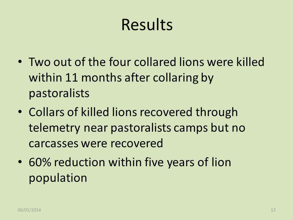 Results Two out of the four collared lions were killed within 11 months after collaring by pastoralists.