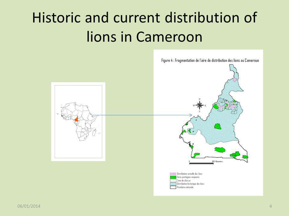 Historic and current distribution of lions in Cameroon