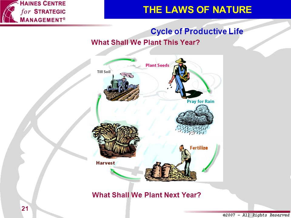 THE LAWS OF NATURE Cycle of Productive Life