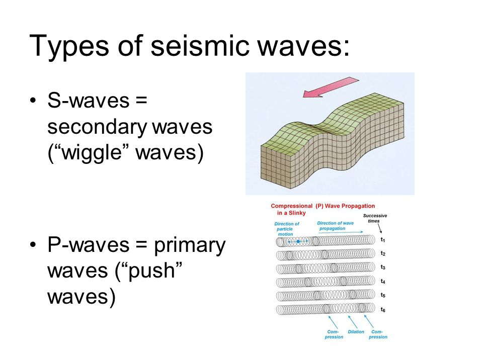 Types of seismic waves:
