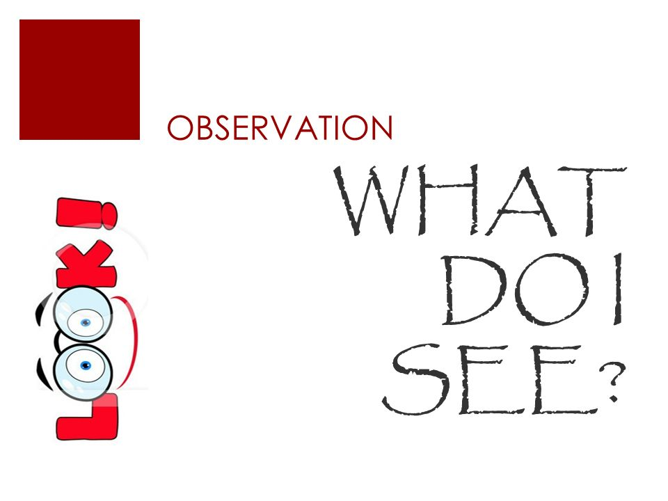 OBSERVATION WHAT DO I SEE