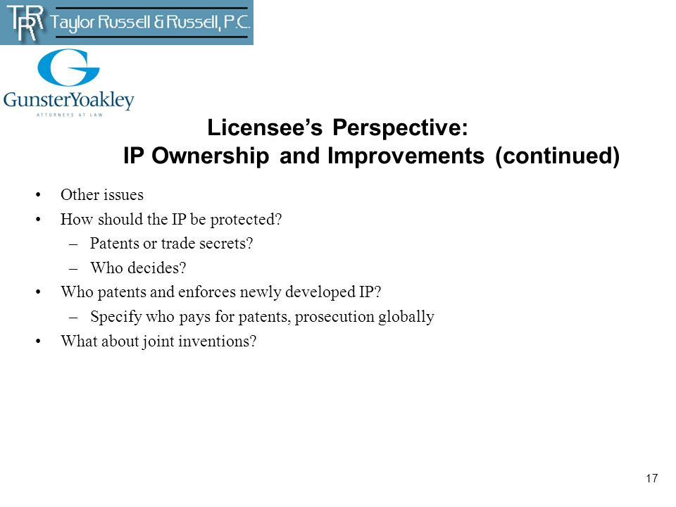 Licensee's Perspective: IP Ownership and Improvements (continued)