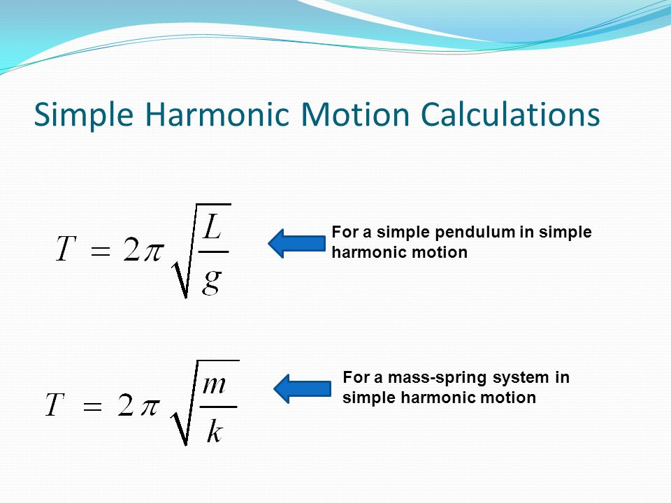 Simple Harmonic Motion Calculations